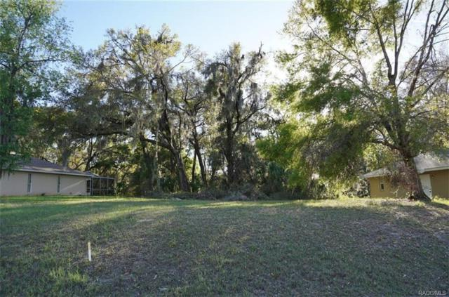 2726 N Canterbury Lake Drive, Hernando, FL 34442 (MLS #770936) :: Plantation Realty Inc.