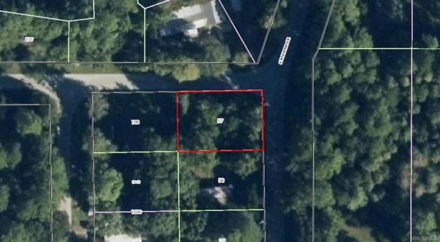 8144 W Pebble Lane, Homosassa, FL 34448 (MLS #770943) :: Plantation Realty Inc.