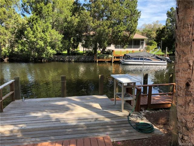 11605 W Riverhaven Drive, Homosassa, FL 34448 (MLS #770992) :: Plantation Realty Inc.