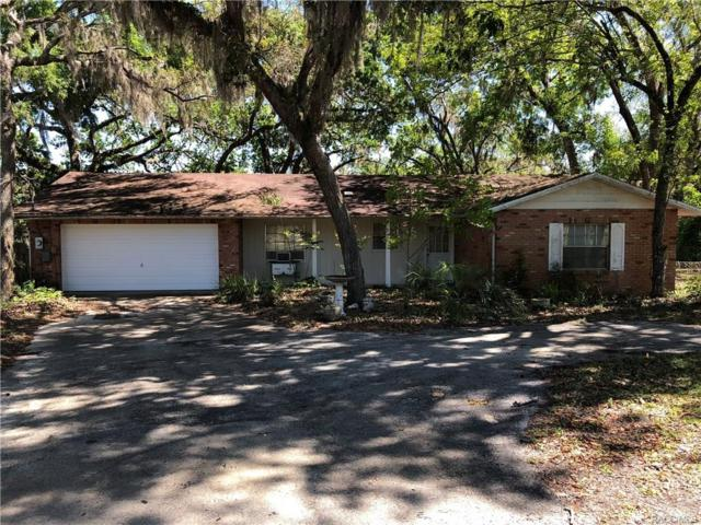 1199 N Point Lonesome Road, Inverness, FL 34453 (MLS #771004) :: Plantation Realty Inc.
