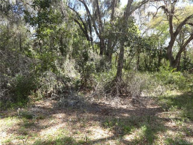 6859 N Beechnut Loop, Hernando, FL 34442 (MLS #771040) :: Plantation Realty Inc.