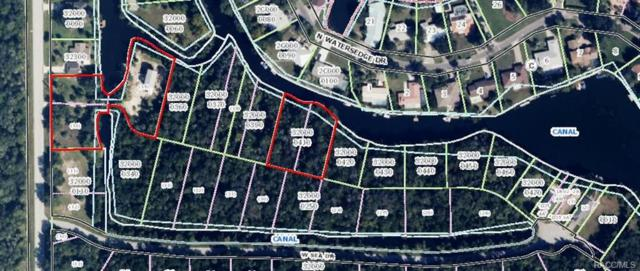 10601 W Crystal Waters Path, Crystal River, FL 34429 (MLS #771073) :: Plantation Realty Inc.