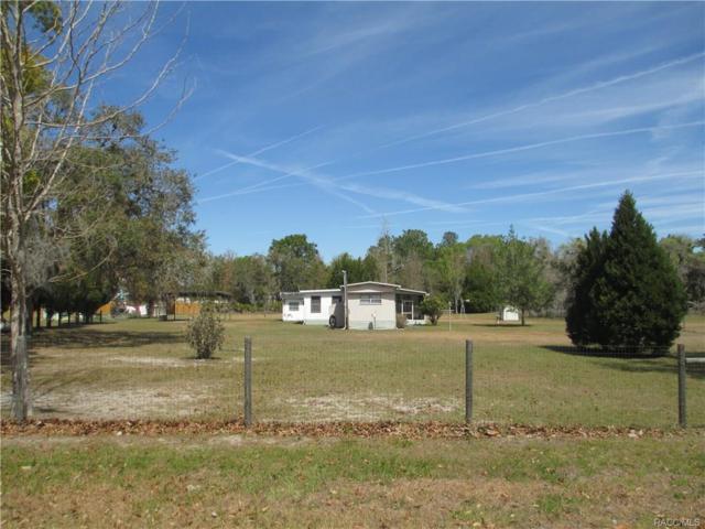 6977 W Sedan Court, Homosassa, FL 34446 (MLS #771084) :: Plantation Realty Inc.