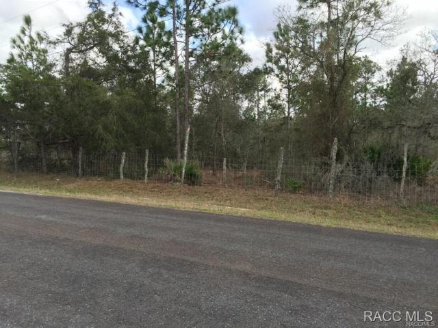 5164 W Field Street, Homosassa, FL 34446 (MLS #771093) :: Plantation Realty Inc.