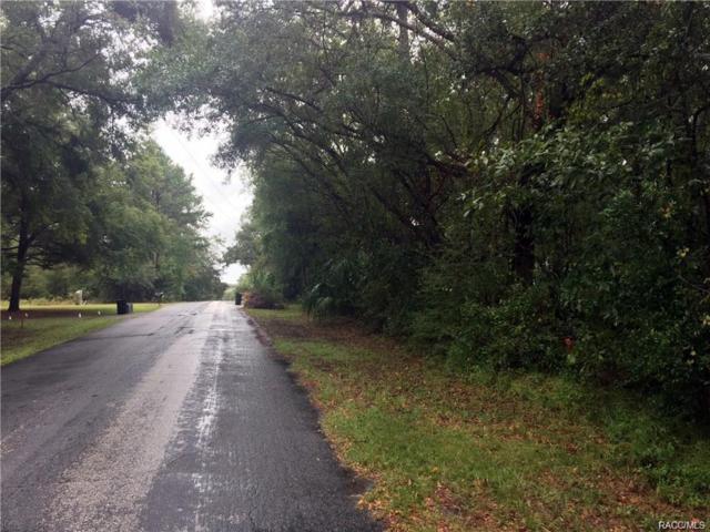 1922 N Crooked Branch Drive, Lecanto, FL 34461 (MLS #771106) :: Plantation Realty Inc.