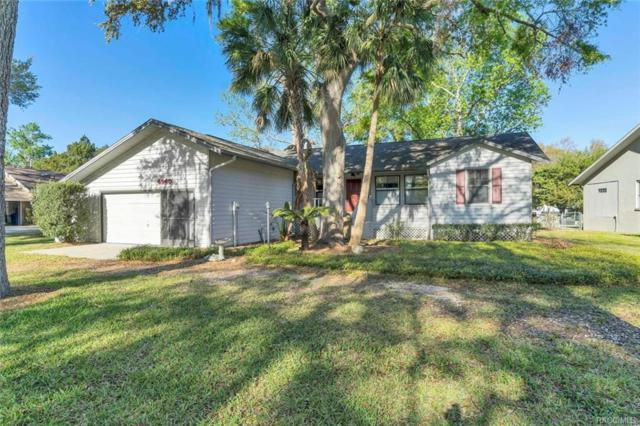 4940 S Stetson Point Drive, Homosassa, FL 24448 (MLS #771124) :: Plantation Realty Inc.