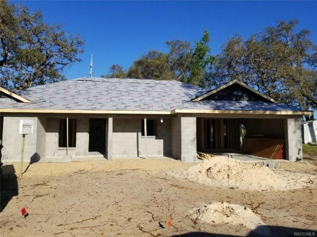 465 N Bluejack Point, Lecanto, FL 34461 (MLS #771125) :: Plantation Realty Inc.