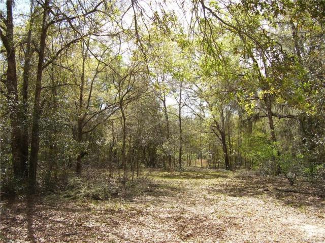 852 E Stockton Street, Beverly Hills, FL 34465 (MLS #771149) :: Plantation Realty Inc.