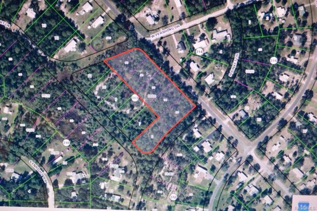 3338 S Lee Way, Homosassa, FL 34446 (MLS #771180) :: Pristine Properties