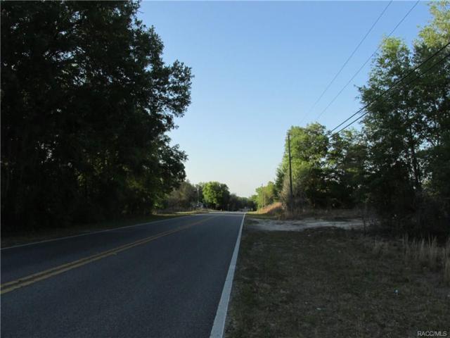 1000 Independence Highway, Inverness, FL 34453 (MLS #771183) :: Plantation Realty Inc.