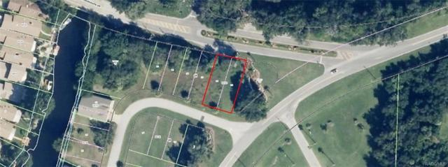 11312 W Riverhaven Drive, Homosassa, FL 34448 (MLS #771191) :: Plantation Realty Inc.