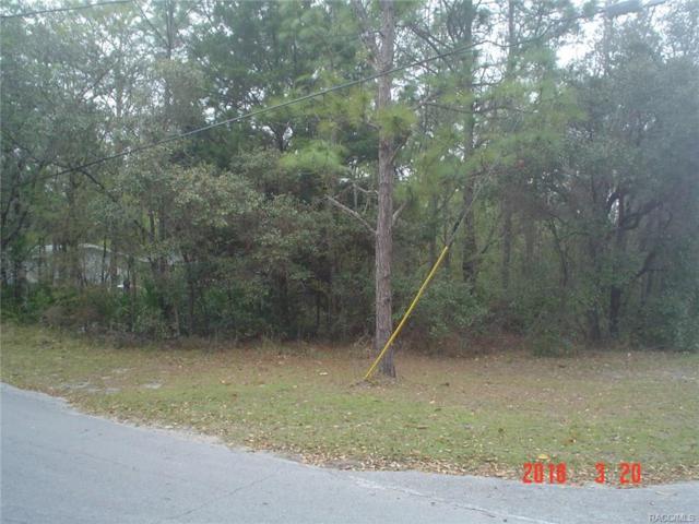 7091 W Sasser Street, Homosassa, FL 34448 (MLS #771193) :: Plantation Realty Inc.