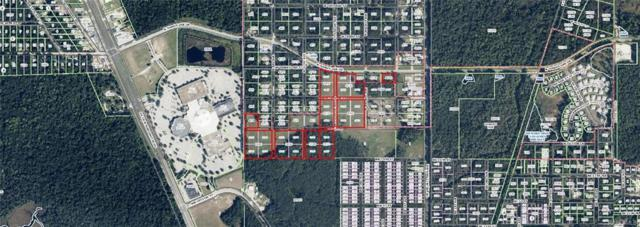 0 N Turkey Oak Drive, Crystal River, FL 34429 (MLS #771211) :: Plantation Realty Inc.