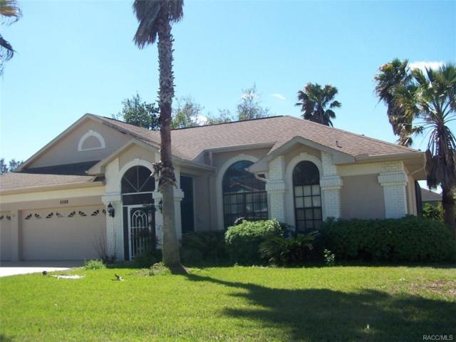 5588 W Hunters Ridge Circle, Lecanto, FL 34461 (MLS #771250) :: Plantation Realty Inc.