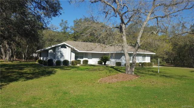 188 N Grandview Avenue, Hernando, FL 34442 (MLS #771267) :: Plantation Realty Inc.