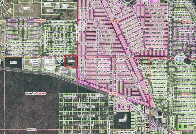 376 S Croft Avenue, Inverness, FL 34453 (MLS #771355) :: Plantation Realty Inc.