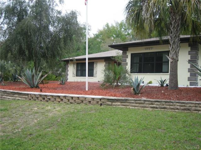 8963 N Joann Drive, Citrus Springs, FL 34434 (MLS #771381) :: Plantation Realty Inc.