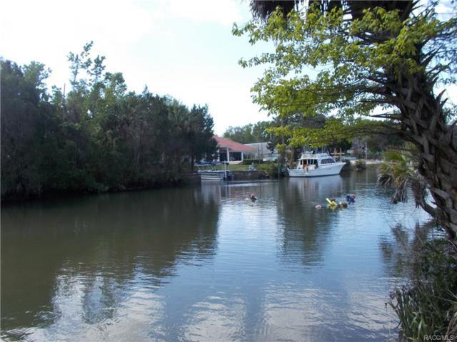 512 SW 1st Avenue, Crystal River, FL 34429 (MLS #771385) :: Plantation Realty Inc.