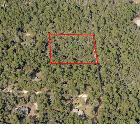 900 N Venice Terrace, Lecanto, FL 34461 (MLS #771404) :: Plantation Realty Inc.