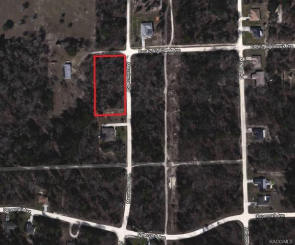 0 Pacific Nighthawk Avenue, Weeki Wachee, FL 34614 (MLS #771414) :: Plantation Realty Inc.