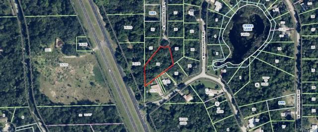 5820 N Summerlake Point, Crystal River, FL 34428 (MLS #771422) :: Plantation Realty Inc.