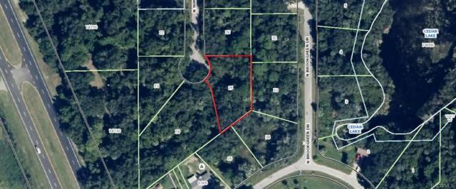5830 N Summerlake Point, Crystal River, FL 34428 (MLS #771423) :: Plantation Realty Inc.