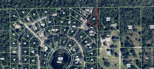 5975 N Varina Point, Crystal River, FL 34428 (MLS #771441) :: Plantation Realty Inc.