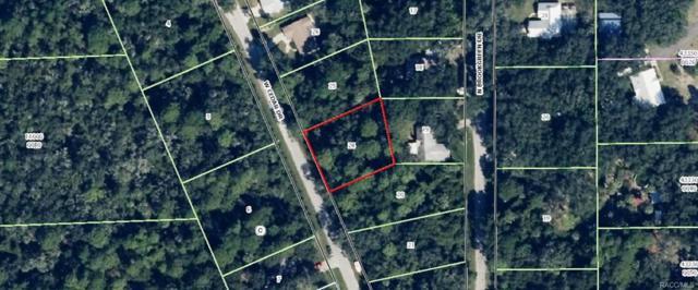 11105 W Cedar Lake Drive, Crystal River, FL 34428 (MLS #771538) :: Plantation Realty Inc.