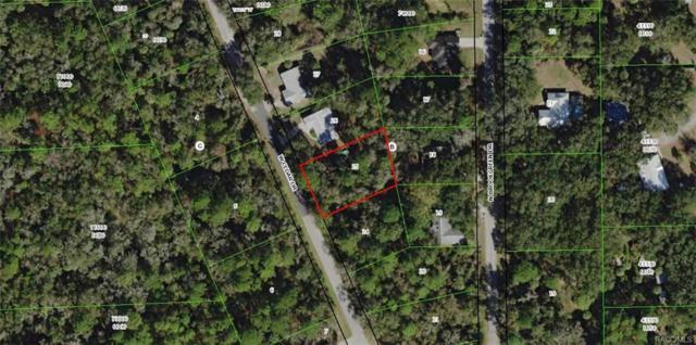 11117 W Cedar Lake Drive, Crystal River, FL 34428 (MLS #771540) :: Plantation Realty Inc.