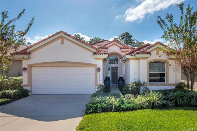 1656 W Laurel Glen Path, Hernando, FL 34442 (MLS #771566) :: Plantation Realty Inc.