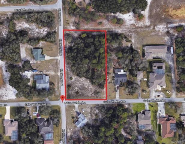 0 Calico Warbler Avenue, Weeki Wachee, FL 34613 (MLS #771607) :: Plantation Realty Inc.