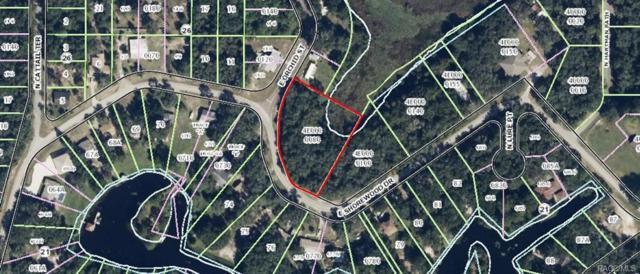 4015 E Shorewood Drive, Hernando, FL 34442 (MLS #771697) :: Plantation Realty Inc.
