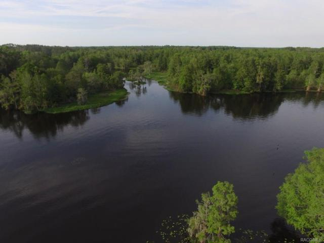 11637 N Hume Point, Dunnellon, FL 34434 (MLS #771721) :: Plantation Realty Inc.