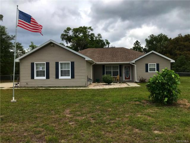 11631 SE 195th Place, Dunnellon, FL 34431 (MLS #771749) :: Plantation Realty Inc.