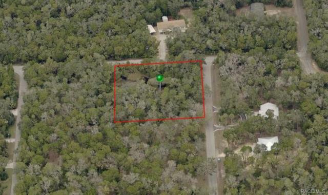 6780 S Haulover Point, Homosassa, FL 34448 (MLS #771829) :: Plantation Realty Inc.
