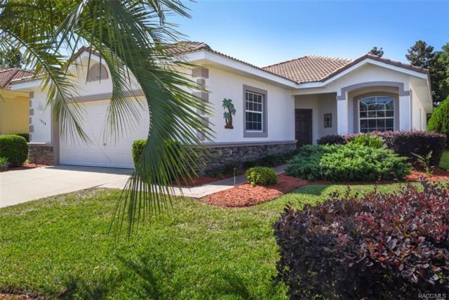 1038 W Copper Mist Court, Hernando, FL 34442 (MLS #771855) :: Plantation Realty Inc.