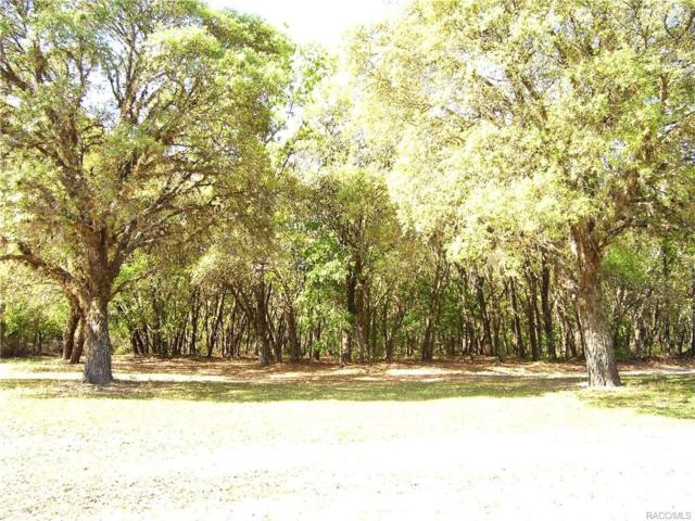 5452 N Mint Point, Beverly Hills, FL 34465 (MLS #771870) :: Plantation Realty Inc.