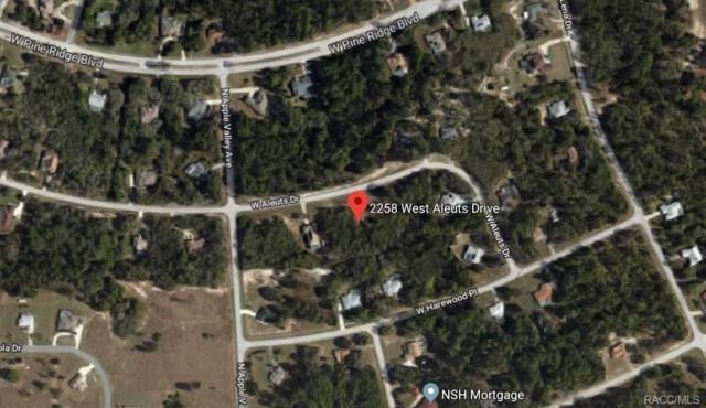 2258 W Aleuts Drive, Beverly Hills, FL 34465 (MLS #771885) :: Plantation Realty Inc.