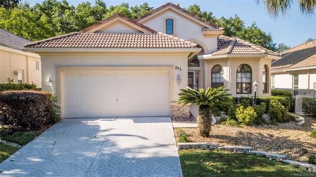 295 W Doerr Path, Hernando, FL 34442 (MLS #771928) :: Plantation Realty Inc.