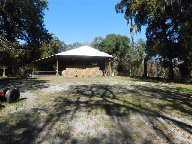 10440 E Wymar Trail, Floral City, FL 34436 (MLS #771930) :: Plantation Realty Inc.