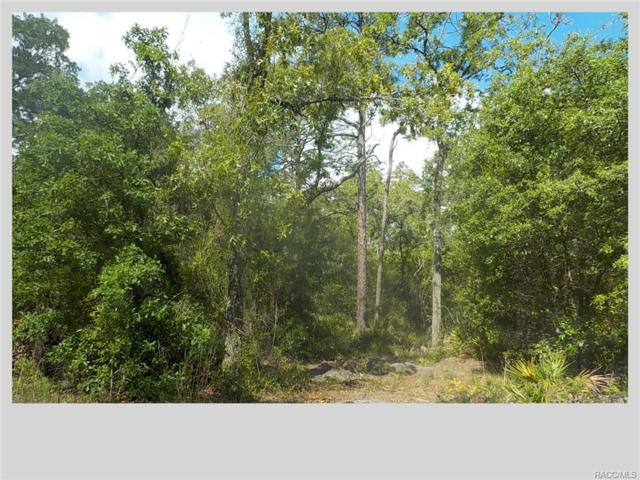 5340 S June Terrace, Homosassa, FL 34446 (MLS #771959) :: Plantation Realty Inc.