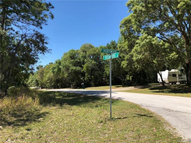 1591 W Ivorywood Dr Drive, Beverly Hills, FL 34465 (MLS #771976) :: Plantation Realty Inc.