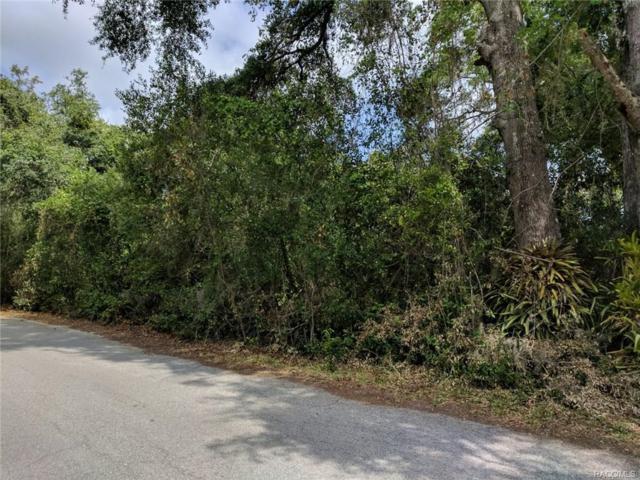 8721 E Greenock Drive, Inverness, FL 34450 (MLS #771978) :: Plantation Realty Inc.