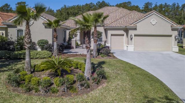 1378 N Bellamy Point, Hernando, FL 34442 (MLS #771988) :: Plantation Realty Inc.