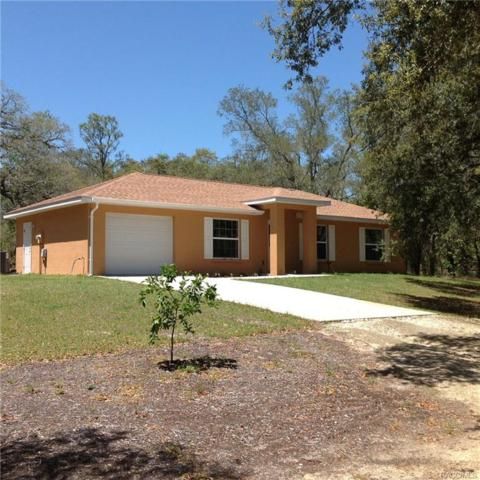 7348 S Elsie Point, Lecanto, FL 34461 (MLS #771992) :: Plantation Realty Inc.