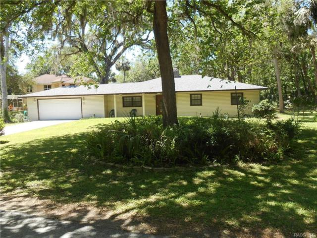 24 Rivertrail Drive, Inglis, FL 34449 (MLS #772025) :: Plantation Realty Inc.