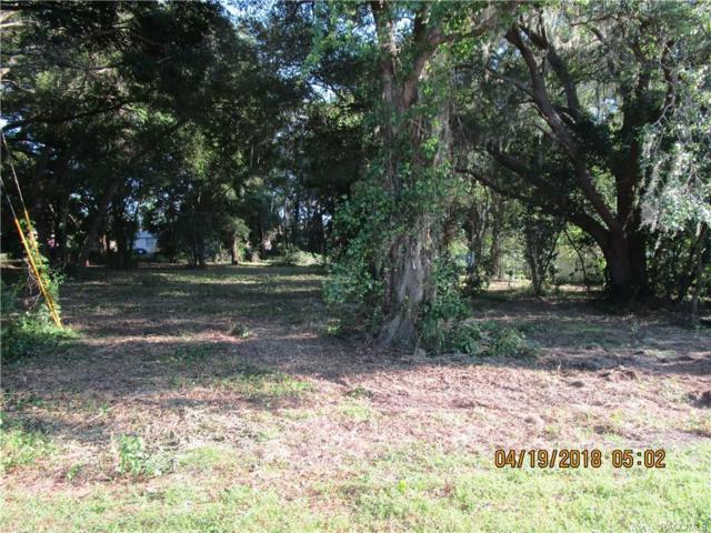 3840 E Orange Drive, Hernando, FL 34442 (MLS #772031) :: Plantation Realty Inc.