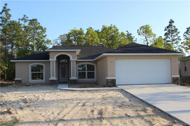 2858 W Lambert Drive, Citrus Springs, FL 34434 (MLS #772038) :: Plantation Realty Inc.