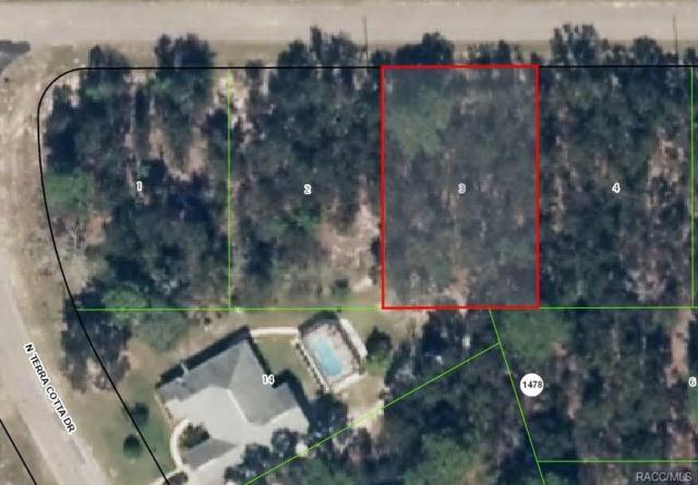 1700 W Magenta Drive, Citrus Springs, FL 34434 (MLS #772045) :: Plantation Realty Inc.