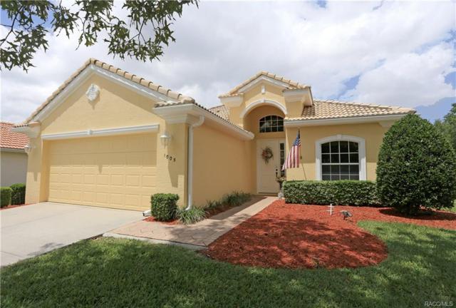 1005 W Skyview Crossing Drive 97A, Hernando, FL 34442 (MLS #772063) :: Plantation Realty Inc.